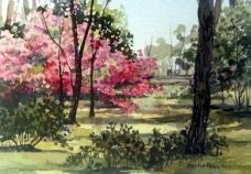 Savannah Spring